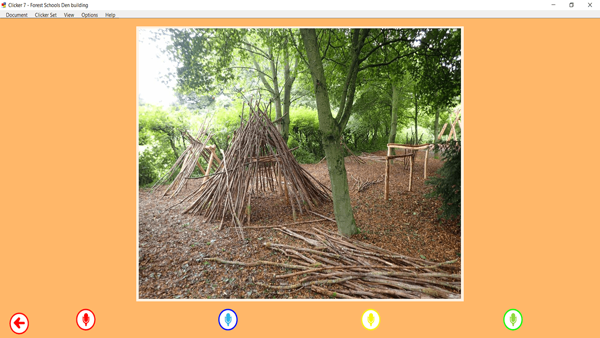 Forest Schools 2_1200x676
