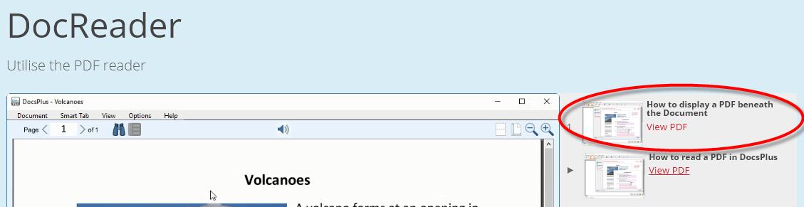 Display a PDF in DocsPlus